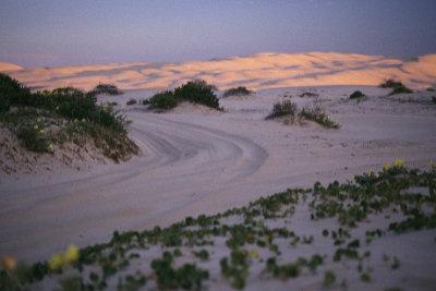 Beach-Birubi sandunes