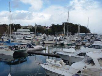 Nelson Bay Marina Jan 18